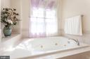 Big relaxing tub with jets - 7901 S RUN VW, SPRINGFIELD