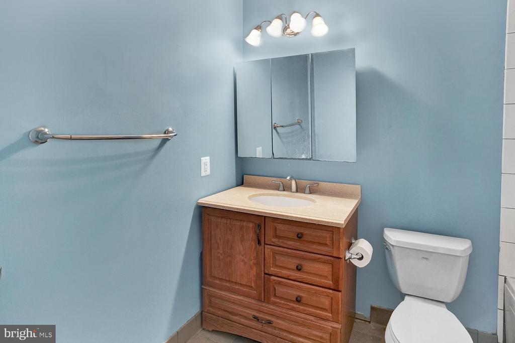 Full Bathroom on Lower Level - 3725 BIG WOODS RD, IJAMSVILLE