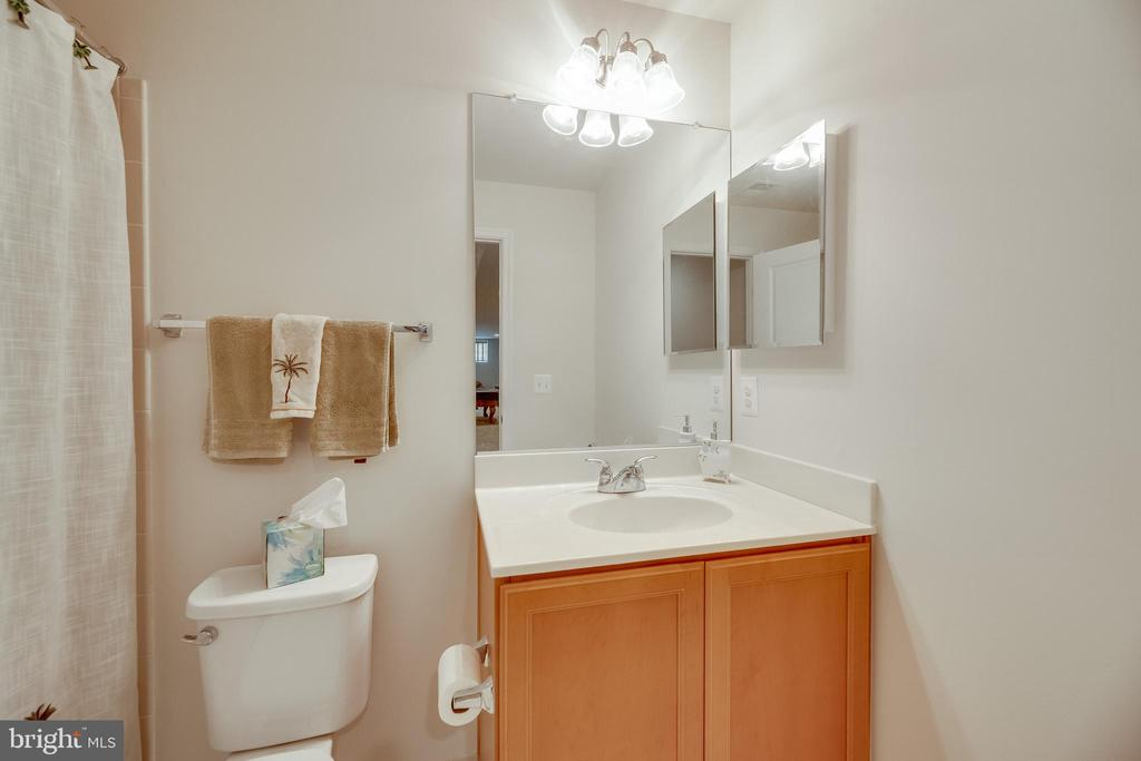 Full Bath in Basement - 20417 SAVIN HILL DR, ASHBURN