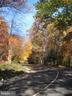 Hiking trails through-out; pet-friendly! - 5902 MOUNT EAGLE DR #609, ALEXANDRIA