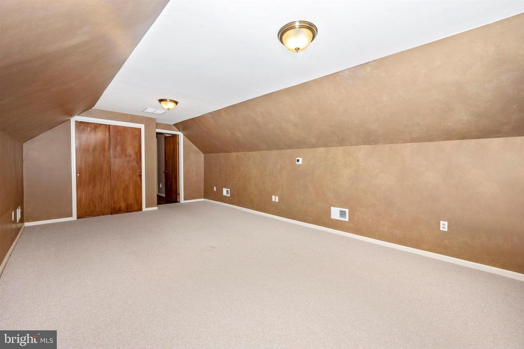 REC ROOM W/ LARGE CLOSET AND WALK-IN CLOSET - 6914 SUMMERSWOOD DR, FREDERICK