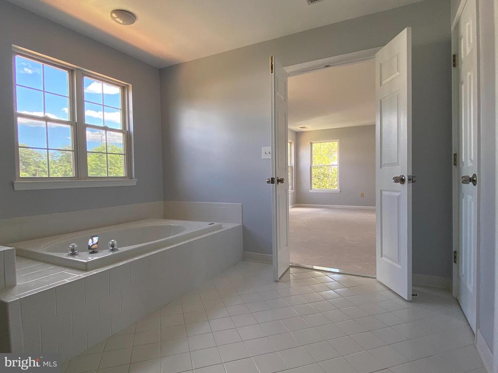 Master Bathroom - another view - 6311 WILLOWFIELD WAY, SPRINGFIELD