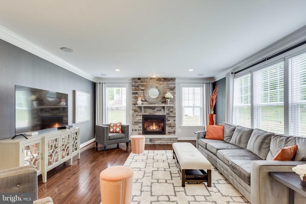 Family Room with Stunning Stone Surround Fireplace - 41684 WAKEHURST PL, LEESBURG