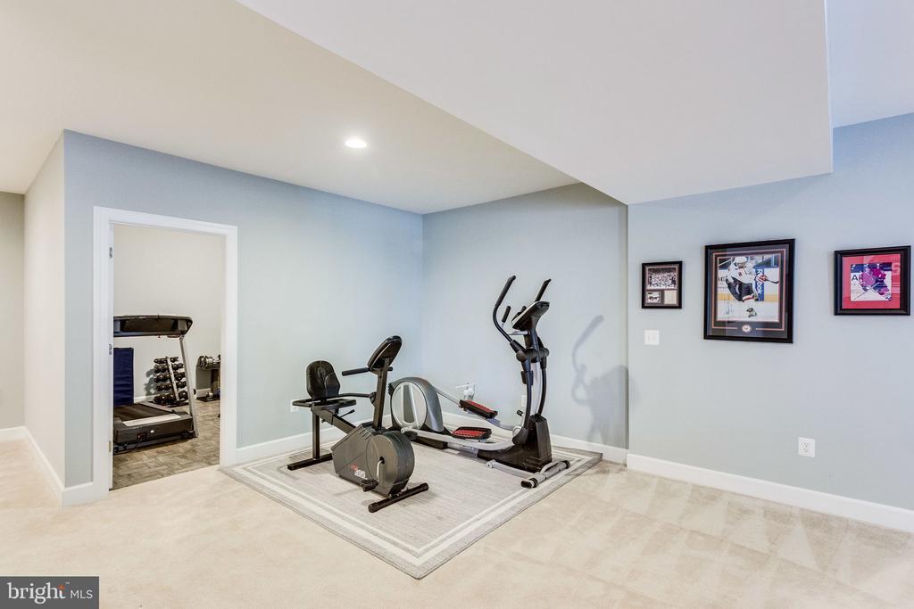 Room for exercise equipment - 41684 WAKEHURST PL, LEESBURG