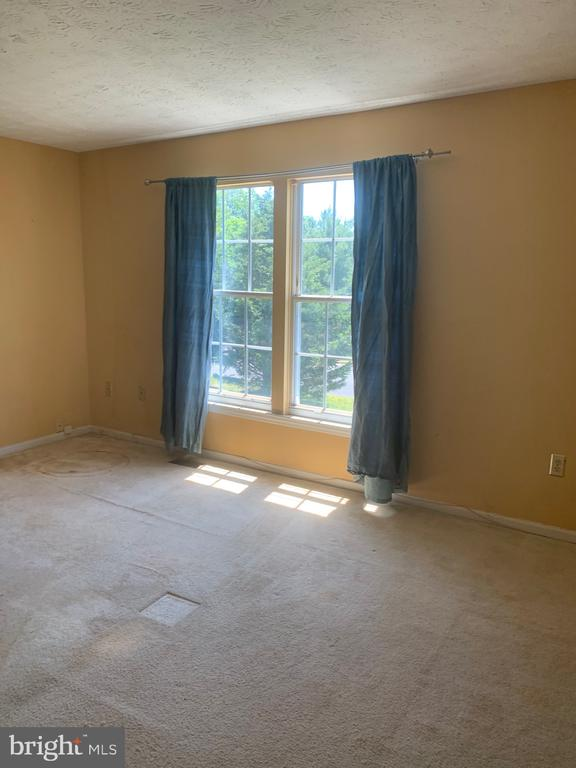 Owners suite - 4111 SWISS STONE DR, BURTONSVILLE