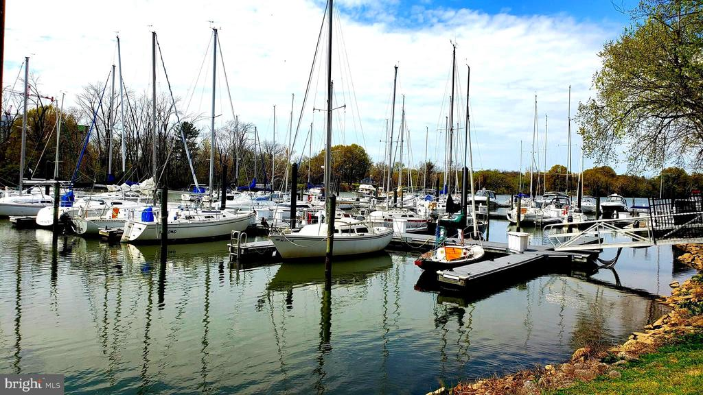 Daingerfield Island Sailing Club   1.6 miles - 400 MADISON ST #607, ALEXANDRIA