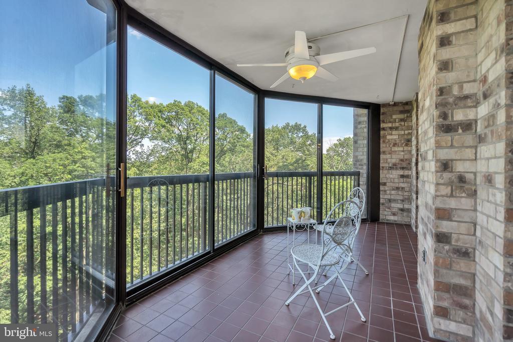 View the Wilson Bridge & beyond. Treehouse-like! - 5903 MOUNT EAGLE DR #610, ALEXANDRIA