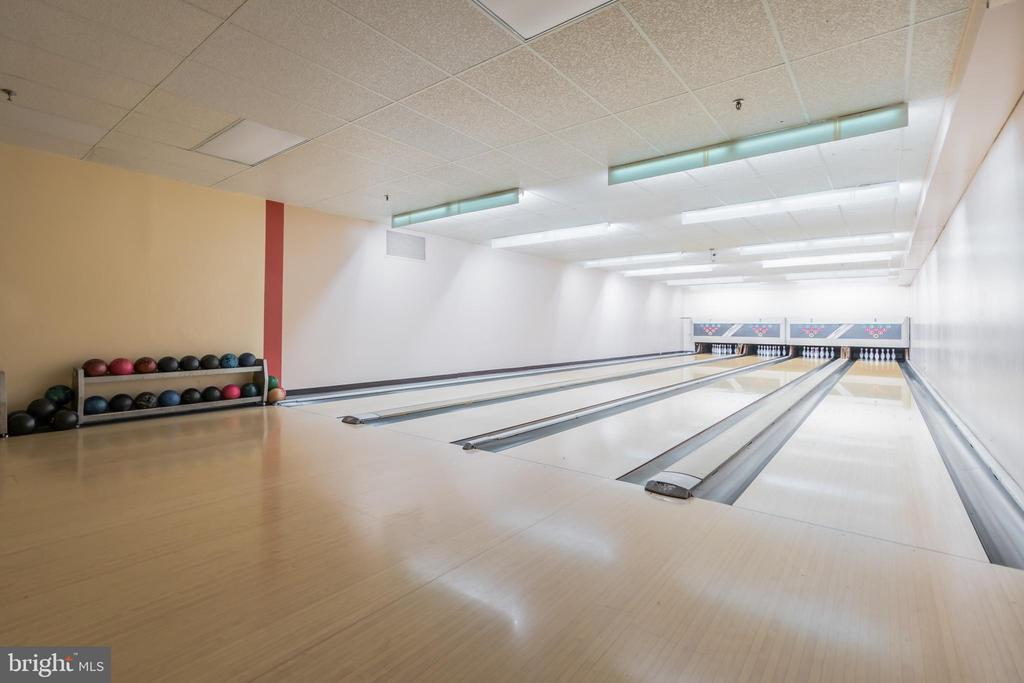 Bowling alley!! - 5903 MOUNT EAGLE DR #610, ALEXANDRIA
