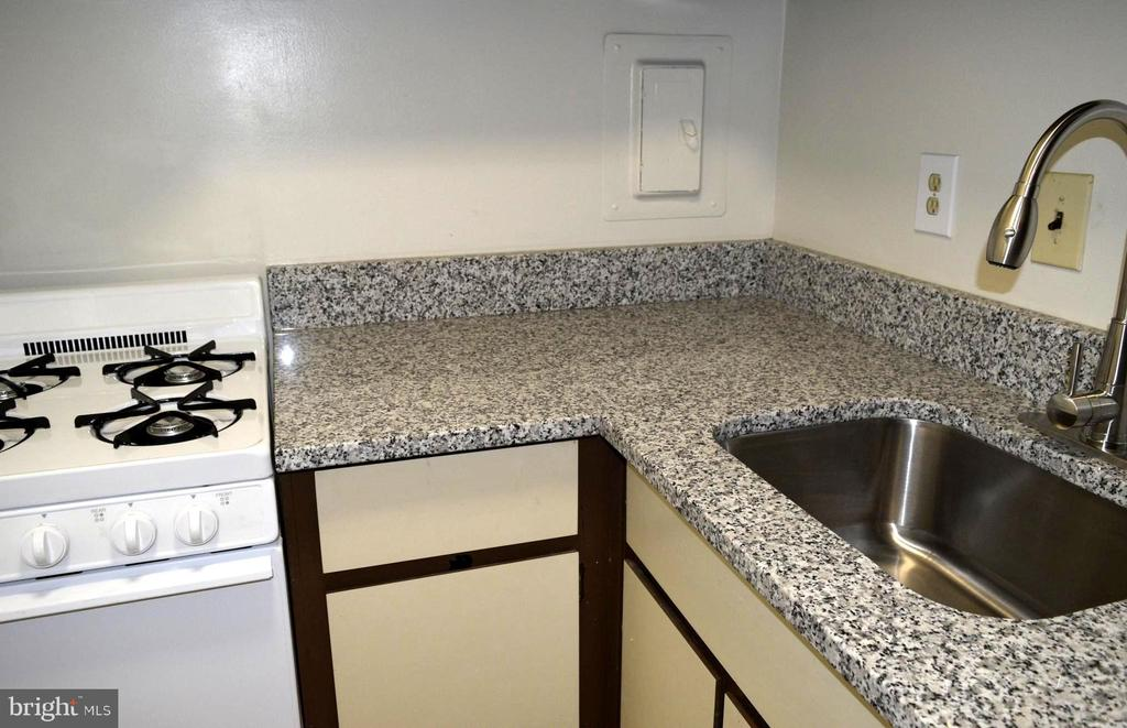 Gas cook, Granite Counter-top and SS Appliances - 21 CANTERBURY SQ #102, ALEXANDRIA