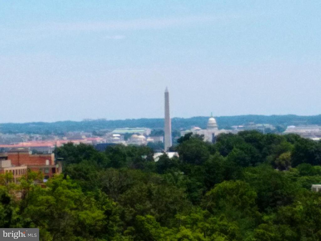 Gorgeous panoramic view from  terrace - 1021 N GARFIELD ST #1030, ARLINGTON