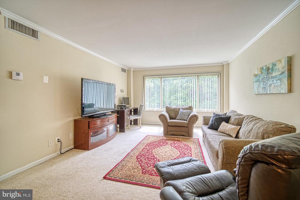 Light-filled living room - 10570 MAIN ST #325, FAIRFAX