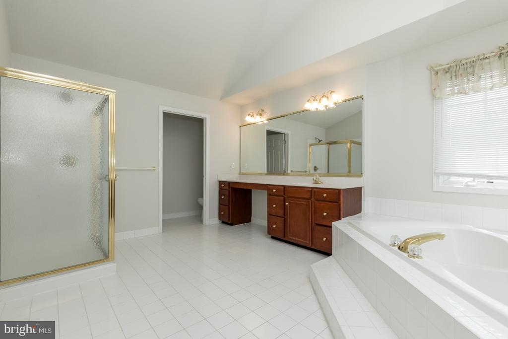 Master Bath - 19755 WILLOWDALE PL, ASHBURN