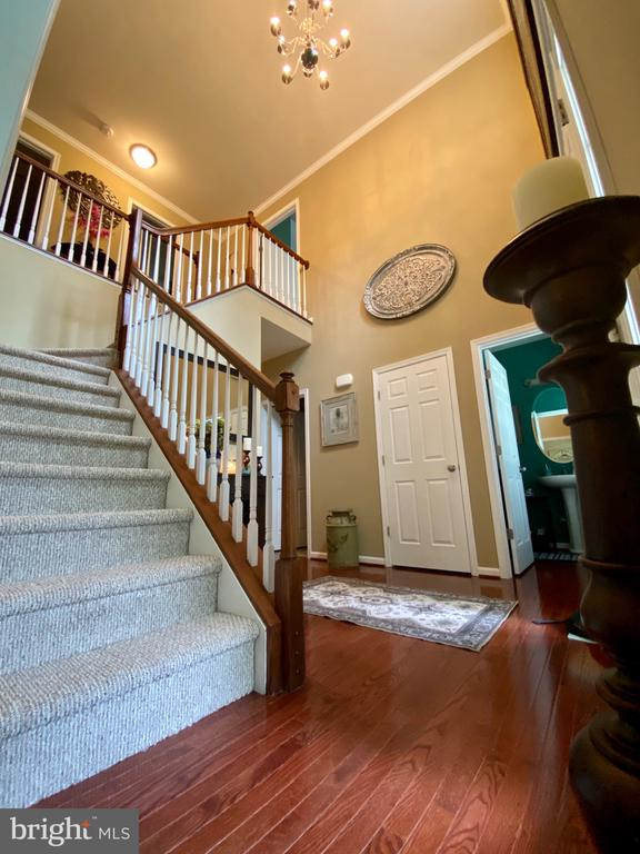 Magnificent Foyer with Hardwood Floors - 3545 GROUSE POINTE DR, STAFFORD