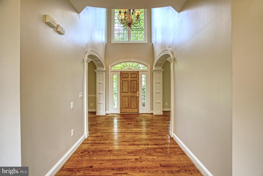 Entrance Foyer - 41011 ALYSHEBA DR, LEESBURG
