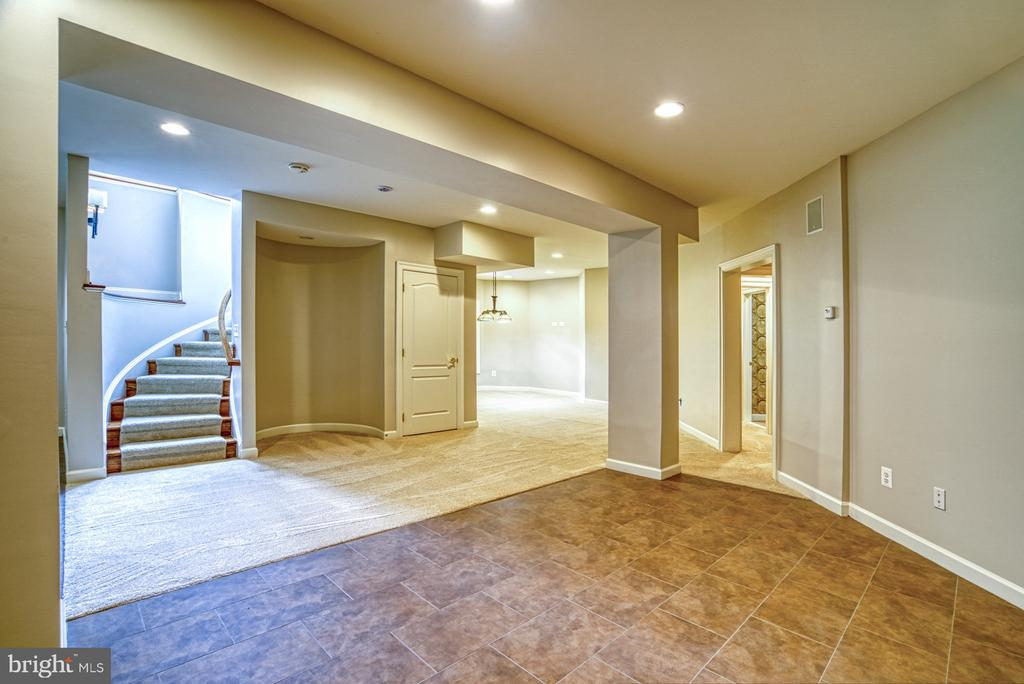 Lower Level - 41011 ALYSHEBA DR, LEESBURG