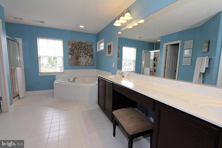 Master bathroom with soaking tub - 17352 TEDLER CIR, ROUND HILL