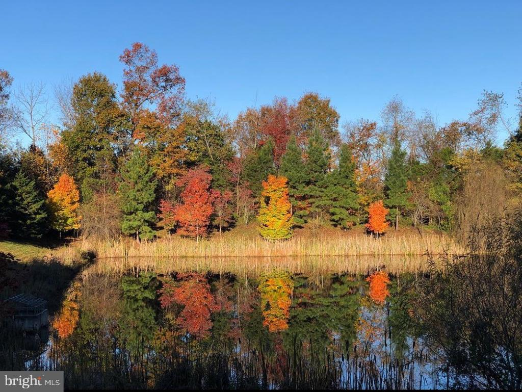 Incredible Fall View - 7166 LITTLE THAMES DR #181, GAINESVILLE