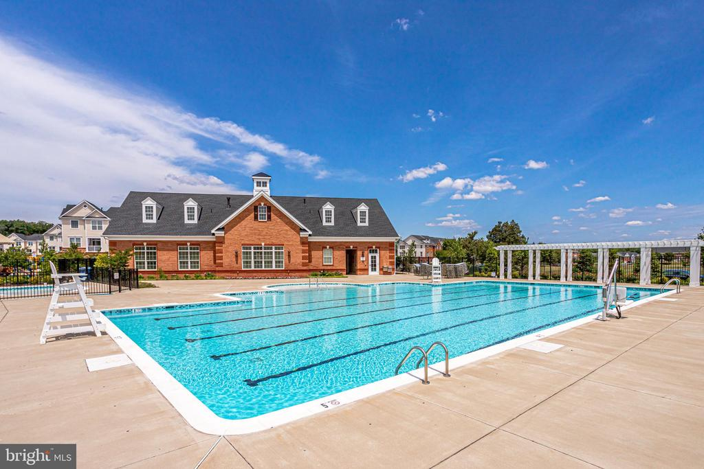 Community Outdoor Pool - 23297 SOUTHDOWN MANOR TER #116, ASHBURN