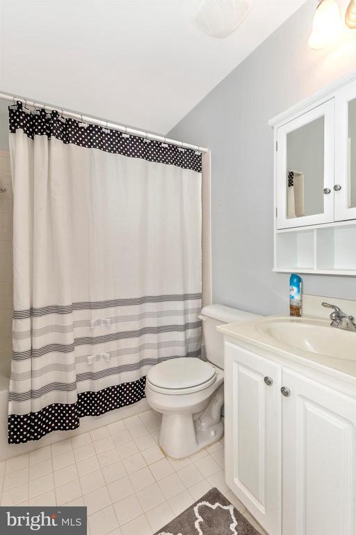 Full lower level bathroom. - 2689 MONOCACY FORD RD, FREDERICK