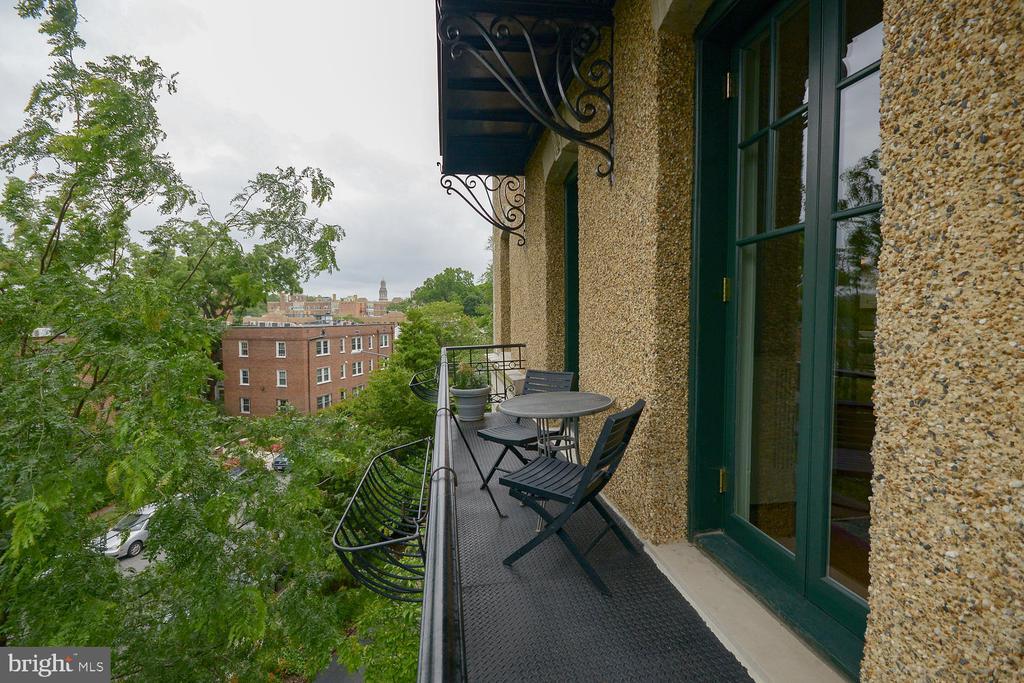 Treetop views down to Rock Creek Park - 2853 ONTARIO RD NW #205, WASHINGTON