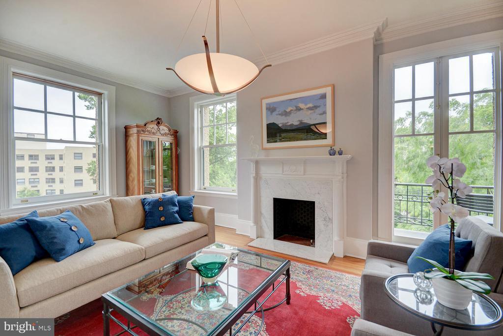 TALL ceilings, crown molding,  & large windows - 2853 ONTARIO RD NW #205, WASHINGTON