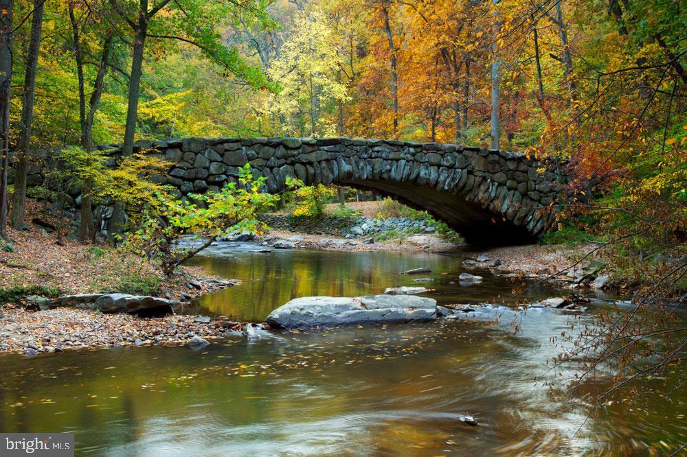 Rock Creek Park - 2853 ONTARIO RD NW #205, WASHINGTON