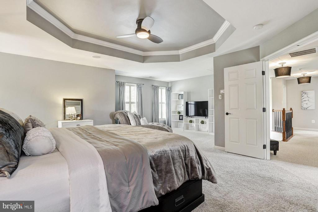 Striking Tray Ceiling - 11000 COUNTRY CLUB RD, NEW MARKET