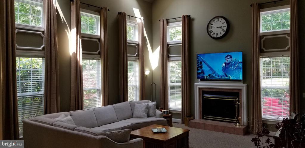 Family Room with soaring 22ft ceiling! - 100 EMPRESS ALEXANDRA PL, FREDERICKSBURG