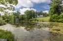 Tranquil pond - 16832 OLD WATERFORD RD, PAEONIAN SPRINGS