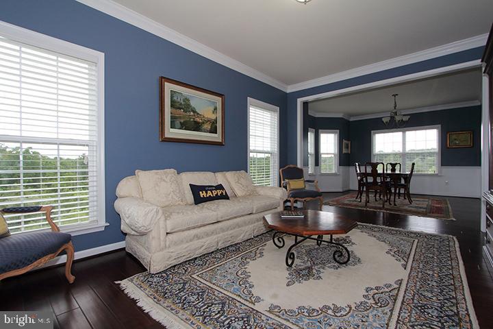 Living room overlooking dining room - 20999 HONEYCREEPER PL, LEESBURG