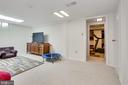 versatile lower level den for media, games - 3831 N ABINGDON ST, ARLINGTON