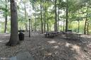 Picnic and Grilling Areas in Park Setting! - 5902 MOUNT EAGLE DR #1406, ALEXANDRIA