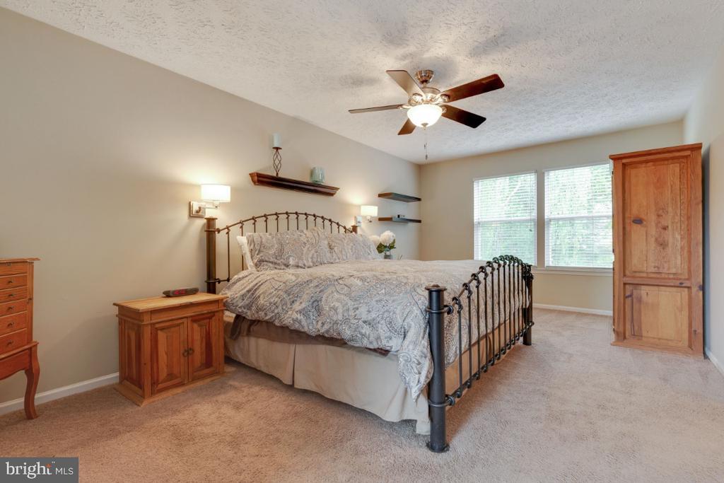 Large Master Bedroom Suite - 109 N LAURA ANNE DR, STERLING