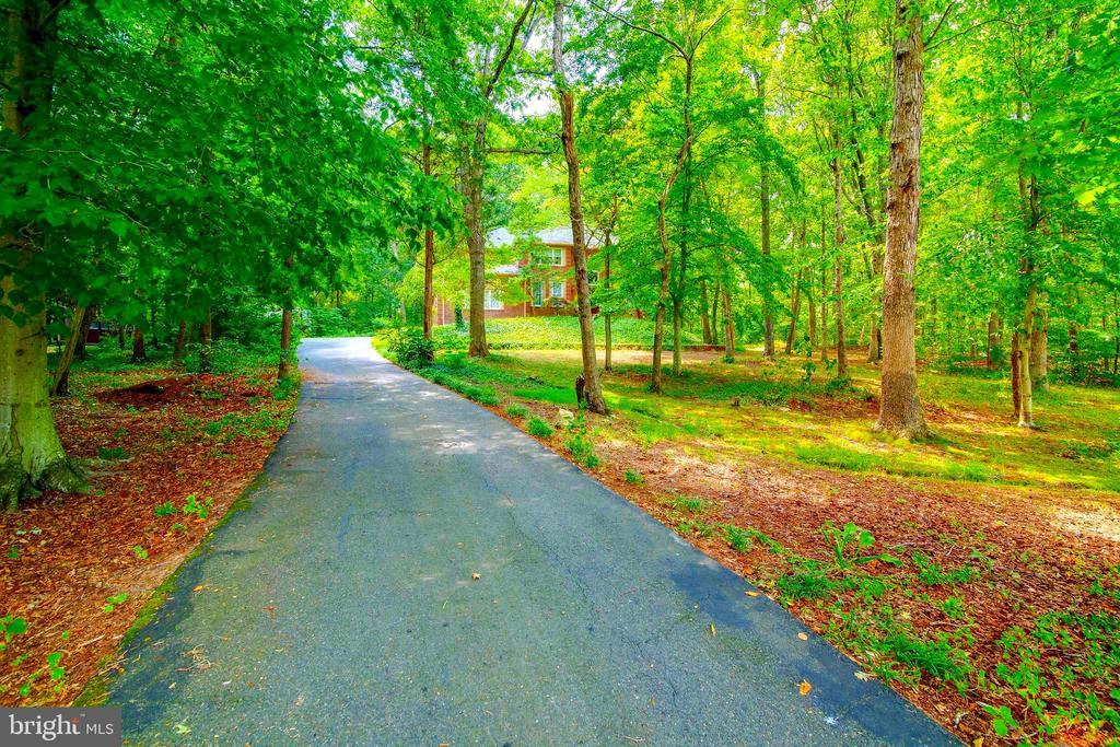 Driveway to Home! - 12210 GLADE DR, FREDERICKSBURG