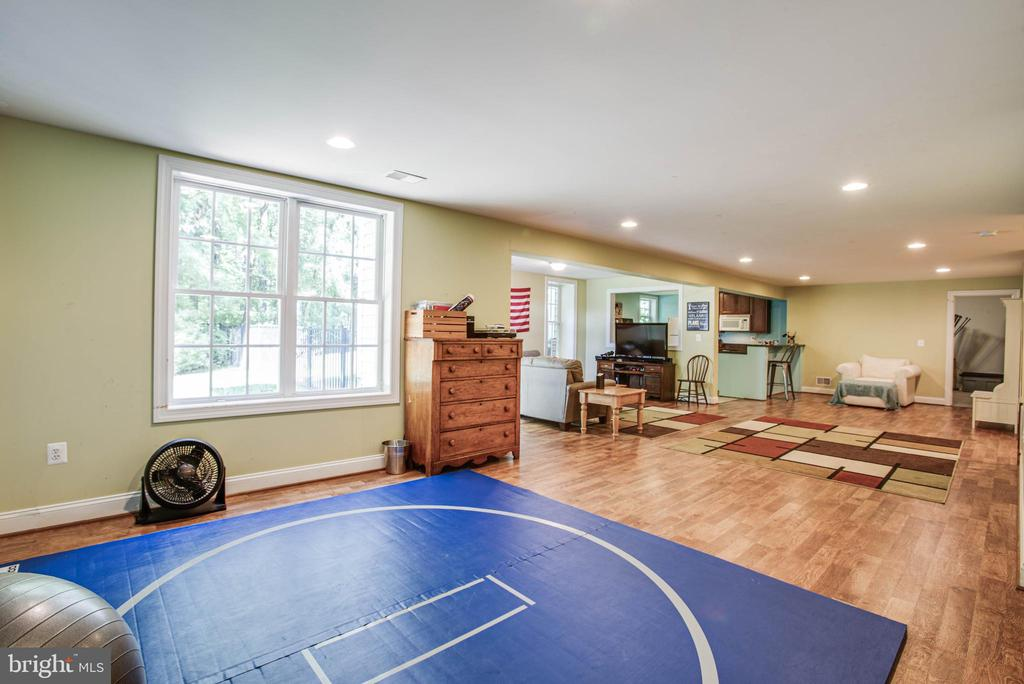 More fun space in the basement - 12103 SAWHILL BLVD, SPOTSYLVANIA