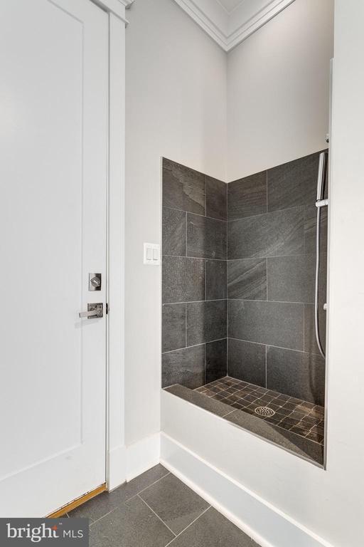 Pet Shower - 1018 MAPLE AVE E, VIENNA