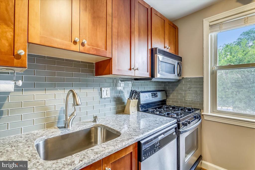 Granite  countertops - 4402 1ST PL NE #33, WASHINGTON