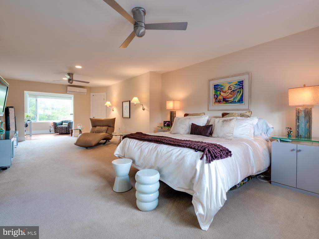 Palatial master bedroom suite - 112 5TH ST SE, WASHINGTON