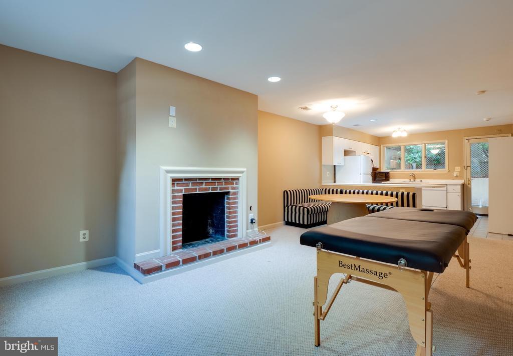 Terrace level apartment - 112 5TH ST SE, WASHINGTON