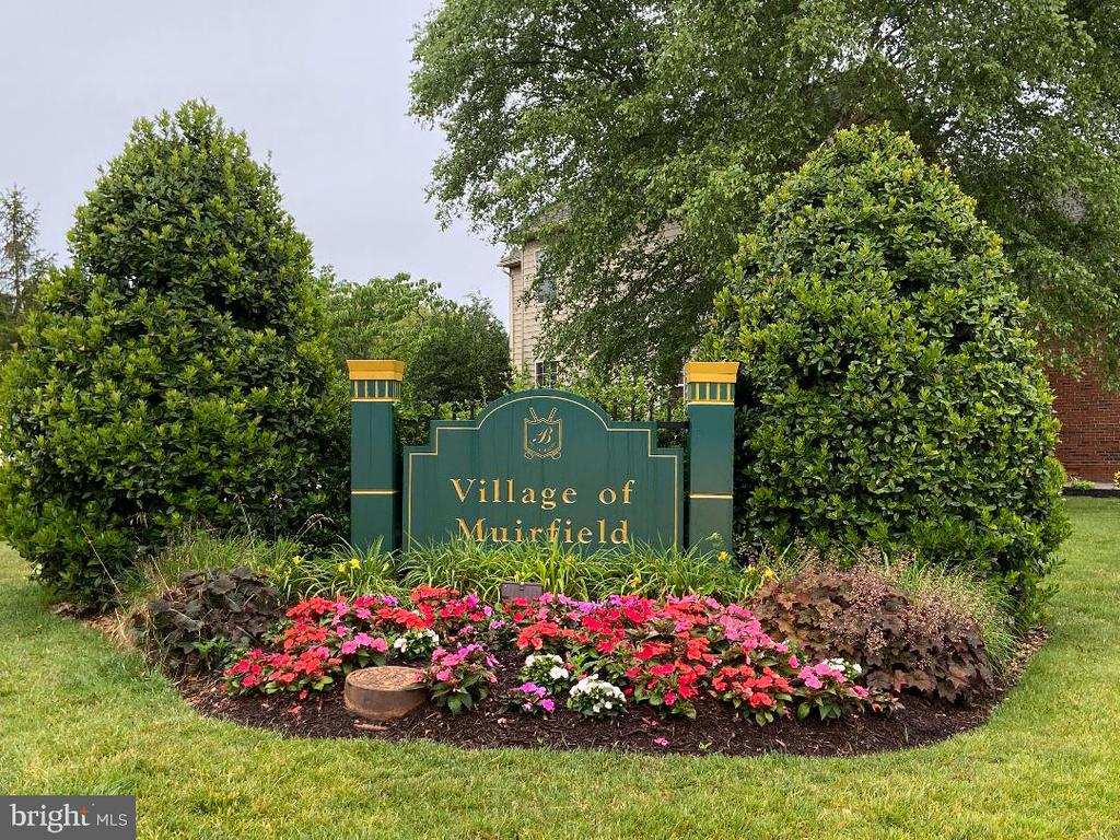 - 20066 MUIRFIELD VILLAGE CT, ASHBURN