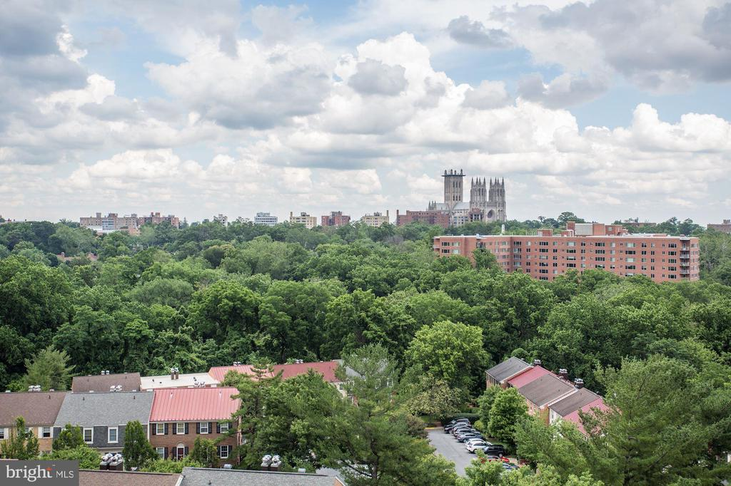 CATHEDRAL VIEW OVER ROOF TOPS - 3101 NEW MEXICO AVE NW #1009, WASHINGTON