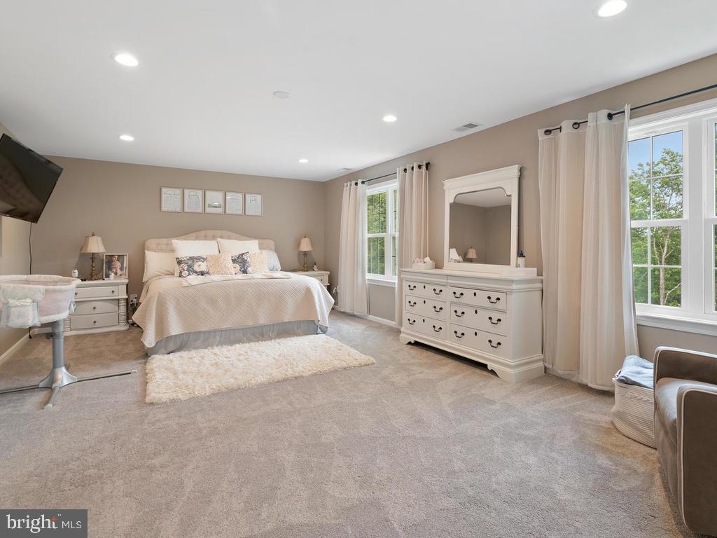 Master bedroom runs the length of home - 39177 ALDIE RD, ALDIE