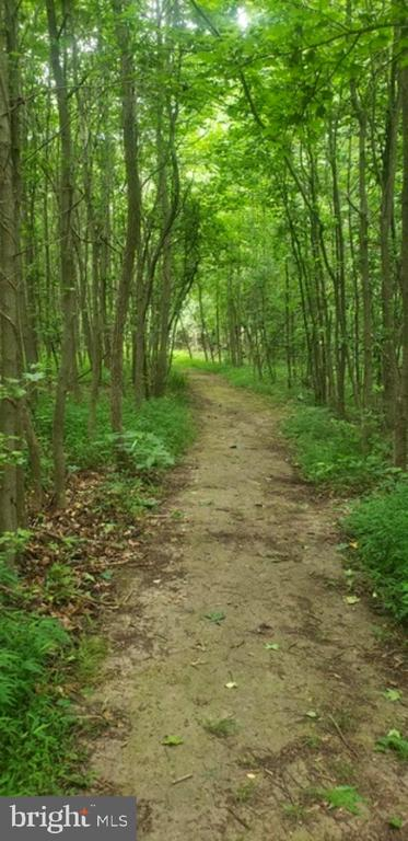 Natural trails to enjoy - 25 ROBIN RD, STAFFORD