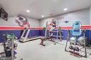 Basement gym - 43266 CANDICE DR, ASHBURN