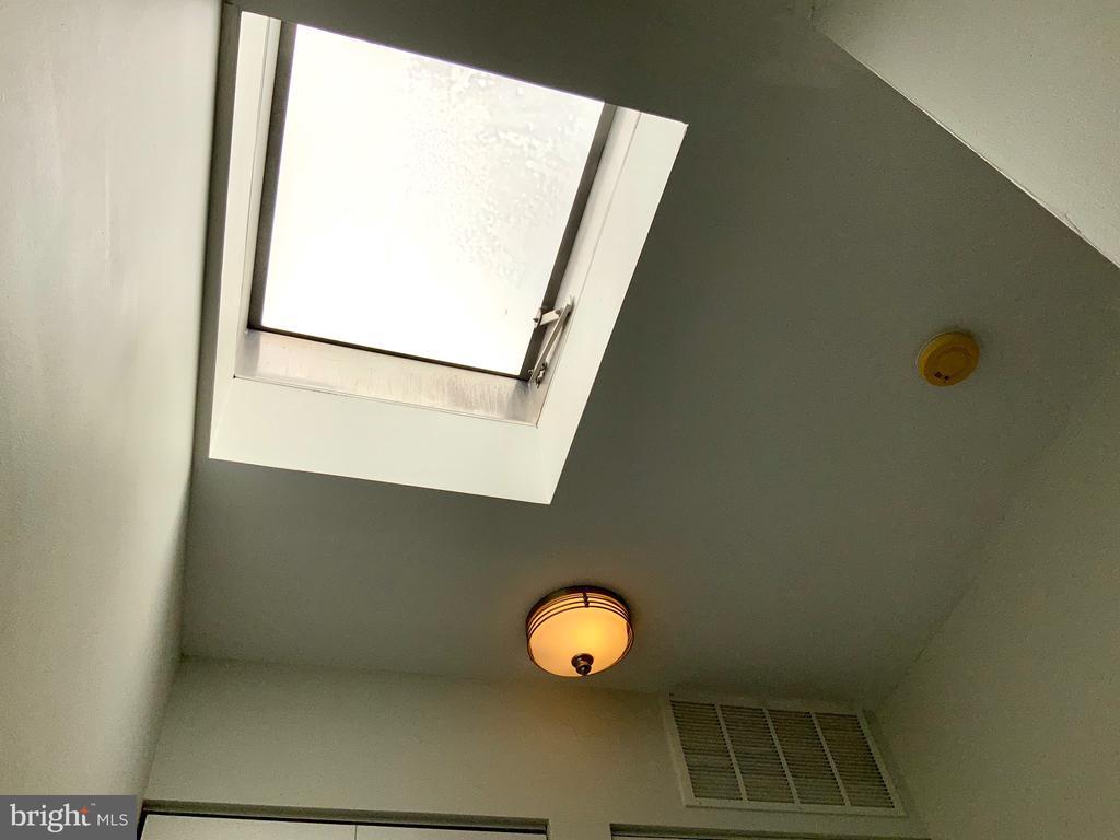Skylight - 3802 PORTER ST NW #302, WASHINGTON
