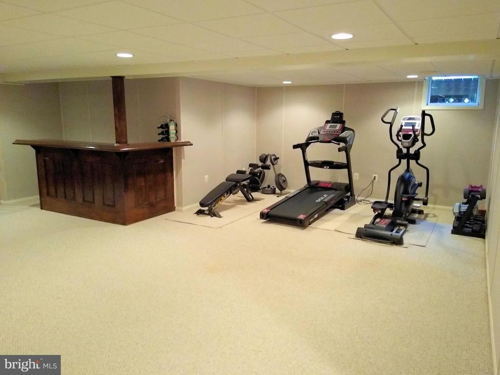 Exercise/Rec Room. - 8537 WILLOW WISP CT, LAUREL
