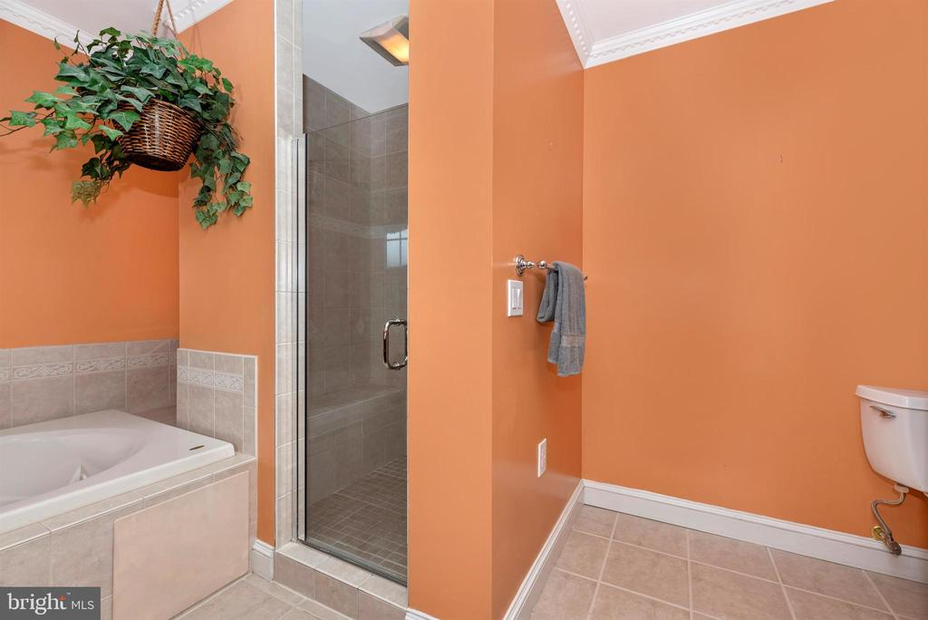 Master Bath Tub & Shower - 3842 MOUNT AIRY DR, MOUNT AIRY