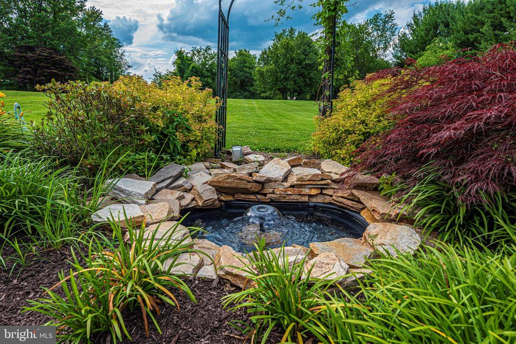 Koi Pond off Rear Patio - 3842 MOUNT AIRY DR, MOUNT AIRY