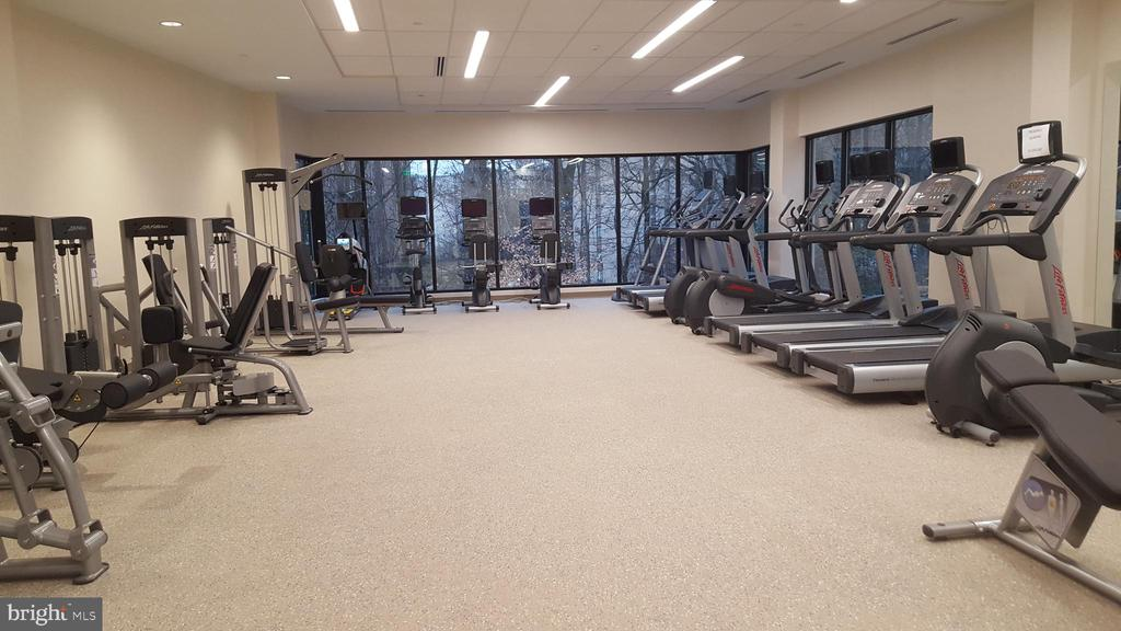 Fitness center w/ treed views - 5904 MOUNT EAGLE DR #309, ALEXANDRIA