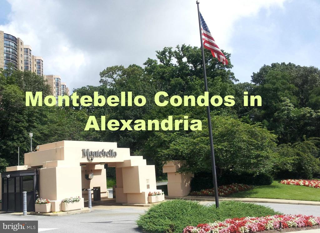 Welcome to our oasis on a 'beautiful hill'! - 5904 MOUNT EAGLE DR #309, ALEXANDRIA